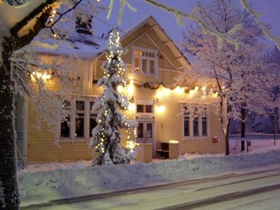 Talvinen Onnenkukko